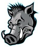 Wild boar head mascot Royalty Free Stock Photo