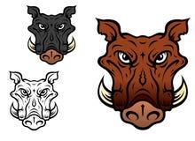 Wild boar or hog Stock Images
