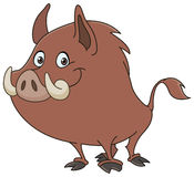Wild boar. Or wild pig cartoon royalty free illustration