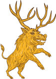 Wild Boar Razorback With Antlers Prancing Drawing Stock Image