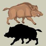 Wild boar  realistic black color silhouette set Stock Photo