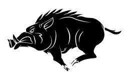 Wild Boar Tattoo Mascot. Eps 10  illustration Design Stock Images