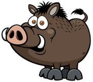Wild boar. Vector illustration of Wild boar Stock Images
