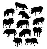Wild Boars Silhouette Royalty Free Stock Photos