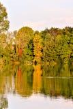 Wild Brenta River Stock Photography