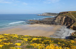 Wild Breton coast Stock Images