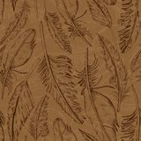 Wild Brown Falling Feathers. royalty free illustration