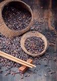 Wild brown rice Royalty Free Stock Image
