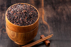 Wild brown rice Royalty Free Stock Photography