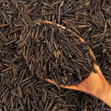 Wild brown rice in spoon Stock Photography
