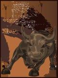 Wild Bull Stock Images