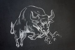 Wild bull. Chalk on blackboard illustration of a wild charging bull bucking and snorting Royalty Free Stock Image