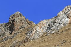 Free WILD Camouflaged Snow Leopard Panthera Uncia In Tibet Walking On A Mountain Side Royalty Free Stock Photography - 104642487