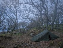 Wild camping in haunted woods. With abandoned ferry house in the distance Stock Photo