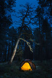 Wild camping in wilderness. In old forest Stock Photo