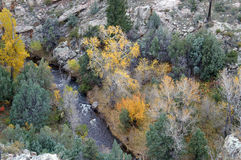 Wild canyon. Picture from above of an autumn canyon with wild river flowing through it royalty free stock photography