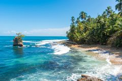Wild Caraïbisch strand van Manzanillo in Puerto Viejo, Costa Rica stock afbeelding