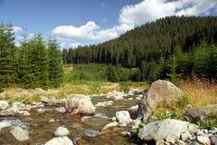 Wild Carpathians. Latorita de Sus Valley - a wild area from Romanian Carpathians Stock Photo