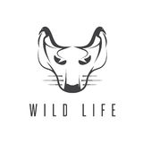 Wild cat with birds in ears concept  design template. Wild cat with birds in ears concept vector design template Royalty Free Stock Photography