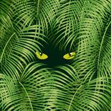 Wild cat eyes. Looking out of the green rain forest vector illustration