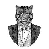 Wild cat Fishing cat Hand drawn illustration for tattoo, emblem, Stock Images