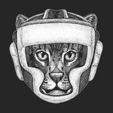 Athletic animal Boxing champion. Print for t-shirt, emblem, logo. Martial arts. Vector illustration with fighter. Sport. Wild cat Fishing cat Hand drawn image Royalty Free Stock Images