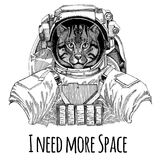 Wild cat Fishing cat wearing space suit Wild animal astronaut Spaceman Galaxy exploration Hand drawn illustration for t Royalty Free Stock Images