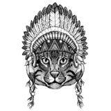 Wild cat Fishing cat Wild animal wearing indian hat Headdress with feathers Boho ethnic image Tribal illustraton Stock Photos