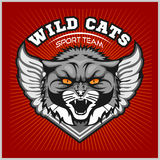 Wild cat head - design for logo and sport emblem Royalty Free Stock Photo