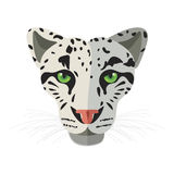 Wild cat, irbis, leopard, snow bars in  Royalty Free Stock Images