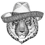 Wild cat Leopard Cat-o`-mountain Panther Wild animal wearing sombrero Mexico Fiesta Mexican party illustration Wild west Royalty Free Stock Photo