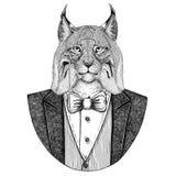 Wild cat Lynx Bobcat Trot Hipster animal Hand drawn illustration for tattoo, emblem, badge, logo, patch, t-shirt. Wild cat Lynx Bobcat Trot Hand drawn image for Royalty Free Stock Photos
