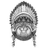 Wild cat Manul Wild animal wearing indian hat Headdress with feathers Boho ethnic image Tribal illustraton Royalty Free Stock Photo