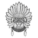 Wild cat Manul Wild animal wearing indiat hat with feathers Boho style vintage engraving illustration Image for tattoo Royalty Free Stock Photography