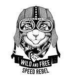 Wild cat Wild cat Be wild and free T-shirt emblem, template Biker, motorcycle design Hand drawn illustration Stock Photography