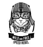 Wild cat Wild cat Be wild and free T-shirt emblem, template Biker, motorcycle design Hand drawn illustration Stock Photos