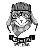Wild cat Wild cat Be wild and free T-shirt emblem, template Biker, motorcycle design Hand drawn illustration Royalty Free Stock Photos