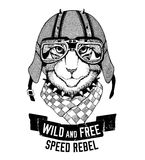 Wild cat Wild cat Be wild and free T-shirt emblem, template Biker, motorcycle design Hand drawn illustration Stock Image