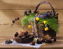 Wild champinjoner i en korg för matlagning Royaltyfri Bild