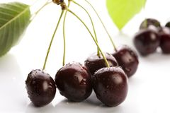 Wild Cherries or Sweet Cherries Stock Photography