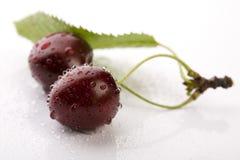 Wild Cherry Royalty Free Stock Photos