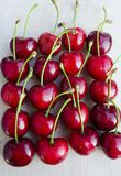 Wild cherry, sweet cherry,bird cherry,or gean. This species, in the rose family (Rosaceae), has a diploid set of sixteen chromosomes  All parts of the plant Royalty Free Stock Photos