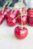 Wild cherry, sweet cherry,bird cherry,or gean Royalty Free Stock Photography