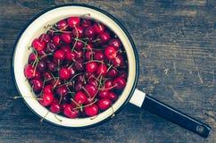 Wild cherry sweet merry Stock Image