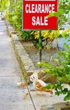 Wild chicken with chicks under clearence sale sign Stock Photo