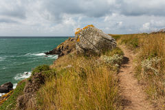 Wild coast of Ile d'Yeu in Vendee, France Stock Image