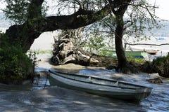Wild coast at Lake Balaton. Hungary royalty free stock photos