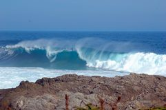 Wild Coast (South Africa)