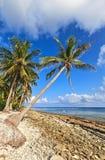 Wild coast. On uninhabited island in the Indian Ocean, Maldives stock photography