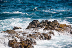 Wild Coastline of Aruba in the Caribbean Stock Images